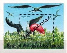 MDB-BK8-576-2 MINT ¤ ANTIGUA & BARBUDA OVERPRINT MAIL 1991 BLOCK ¤ BIRDS OF THE WORLD OISEAUX BIRDS PAJAROS VOGELS VÖGEL