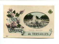 Cp - VERSAILLES (78) - Un Bonjour De...