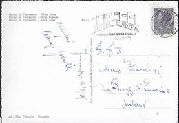 """ANNULLO A TARGHETTA """"HOTEL EUROPA...""""  UFF. FORTE DEI MARMI - ORNAGHI 1238.59 SU CARTOLINA MARINA DI PIETRASANTA"""