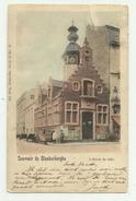 Blankenberge  *  L'Hotel De Ville (Nels, Kleur)