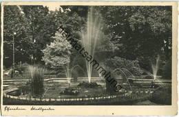 Pforzheim - Stadtgarten - Foto-Ansichtskarte - Pforzheim