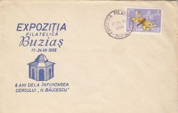 BUZIAS PHILATELIC CLUB, FLY STAMP, SPECIAL COVER, 1966, ROMANIA