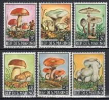 CHAMPIGNONS/MUSHROOMS/SETAS - SAINT MARIN - 1967 - N°698/703 ** - Paddestoelen
