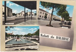 CARTOLINA - POSTCARD - BERGAMO -  SALUTI DA DALMINE - Bergamo
