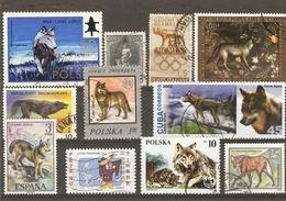 Loups - Petit Lot De 12 Timbres°  - Canis Lupus - Vrac (max 999 Timbres)