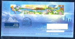 C210- Postal Used FDC Of Singapore & Egypt Joint Issue. Posted To Pakistan. Flowers. Birds. River. Building. - Joint Issues