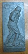 AC - CENTENARY OF BIRTH OF MUSTAFA KEMAL ATATURK ZINC PLAQUETTE BY CINKUR - Bronzes