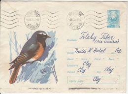 BIRDS, FINCH, COVER STATIONERY, ENTIER POSTAL, 1966, ROMANIA - Sperlingsvögel & Singvögel