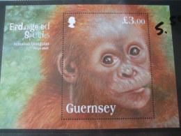 Guernsey Sumatran Orangutan Mnh - Apen