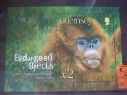 Guernsey Nosed Monkey Mnh - Apen