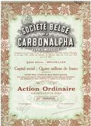 Ancienne Action - Société Belge Du Carbonalpha - Titre De 1927 - Industrie