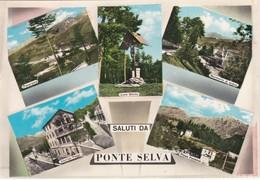 CARTOLINA - POSTCARD - BERGAMO - PARRE -   SALUTI DA PONTE SELVA - Bergamo