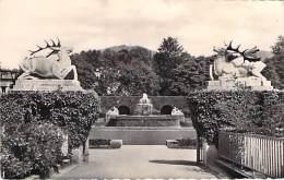 DEUTSCHLAND Allemagne Germany ( Bade Wurtenberg ) BADEN BADEN Entrée De La Roseraie - CPSM Dentelée Noir Blanc PF 1958 - Baden-Baden