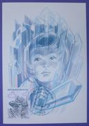 Carte Postale Maximum - FDC - Série  Nature Minéraux Quartz - 1986 - YT 2430 - Cartes-Maximum
