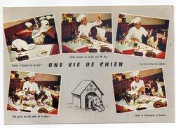 """Humour--1968---chien--""""Une Vie De Chien"""" ,cpsm 15 X 10 N° 195 éd Artaud--cachet Avranches-50-- - Humor"""