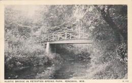 Wisconsin Kensoha Rustic Bridge In Petrified Spring Park 1937 - Kenosha