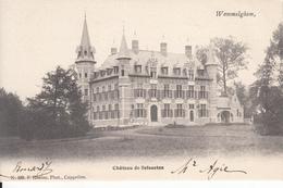 WOMMELGEM -chateau De Selsaeten - Wommelgem