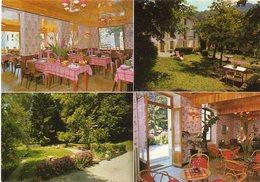 "38  ALLEVARD Les  BAINS            Hôtel Restaurant  "" Les Pervenches "" - Allevard"