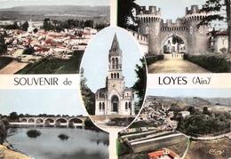 01-LOYES- MULTIVUES - France