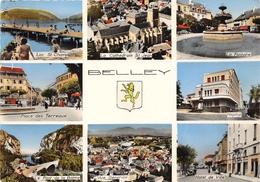 01-BELLEY- MULTIVUES - Belley