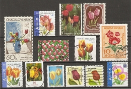 Fleurs - Tulipes - Petit Lot De 13 Timbres Oblitérés - Vrac (max 999 Timbres)
