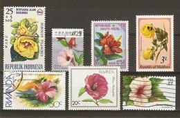 Fleurs - Hibiscus - Petit Lot De 7 Timbres Oblitérés - Vrac (max 999 Timbres)