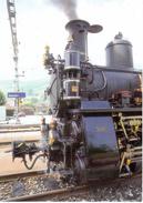 Dampflok HG 3/3 1067 (ex Brünig) 1910 Des Ballenberg - Dampfbahn Sarnen - Stations - Met Treinen