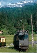 Fourgon - Automoteur à Sixt, Juin 1958 CEN BVA - Stations - Met Treinen