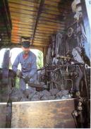 Heizer Auf Lok HG 3/3 1067 (ex Brünig) 1910 Des Ballenberg - Dampfbahn BVA - Trains
