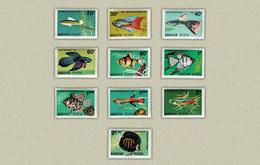 Hungary 1962. Animals / Fishes Set MNH (**) Michel: 1820-1829 / 5.50 EUR - Ungarn