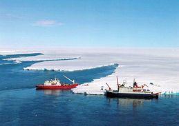 1 AK Antarctica * R/V Polarstern (Gerany) Und Das Südafrikanische Forschungsschiff S. A. Agulhas Im Dronning Maud Land - Ansichtskarten