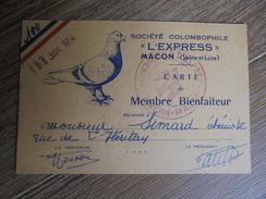 """Macon  Société Colombophile """"l'express"""" 1954  Pigeon  D - Macon"""