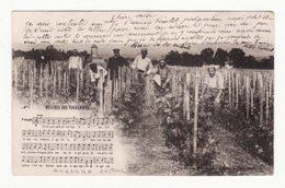 89  VENDANGES   Chanson   Misère Des Vignerons     éditions Toulot à Auxerre - France