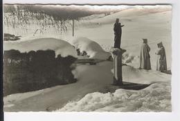 CPAS Photographie Chartreuse De La Valsainte Fontaine De La Vierge Val De Charmey Fribourg Suisse 1938 - FR Fribourg