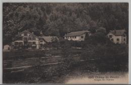 Champ Du Moulin - Gorges De L'Areuse - Phototypie No. 4975 - NE Neuchâtel