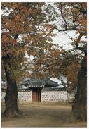 1 AK Südkorea * Kyerim - Im Gyeongju-Nationalpark - Bestandteil Der UNESCO-Welterbestätte Gyeongju * - Korea (Süd)