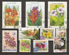 Fleurs Exotiques - Petit Lot De 10 Timbres° - Oiseau De Paradis - Bougainvillée - Erythrina - Tillandsia - Clytostoma - Vrac (max 999 Timbres)