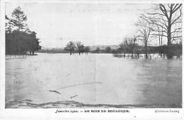 PARIS - INONDATIONS DE 1910 - LE BOIS DE BOULOGNE - CPA - Seine - Paris Flood, 1910