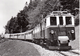 Reproduction: Entre Chamby Et Sonzier 9.06.1938 Train  M.O.B. BVA - Stations - Met Treinen