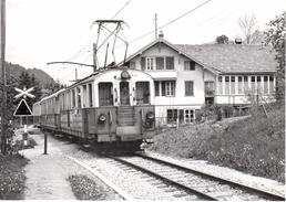 Arrivée à  La Lenk 30.5.1971   M.O.B. BVA - Stations - Met Treinen
