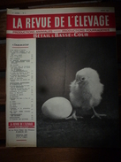 1958 LRDLE  :Production Fourragères Et Alimentation; En Pays De Galles; Etc - Animals