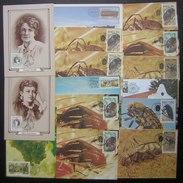 RSA République Sud Africaine, Lot De 15 Cartes Maximum, Insectes, Etc, Voir Photos - Afrique Du Sud (1961-...)