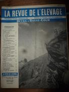 1958 LRDLE  :Production Fourragères Et Alimentation;Journée Du Mouton à Toulouse; Les Foins;  Le Lait;etc - Animals