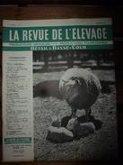 1958 LRDLE  : Le Mouton; Le Porc ; Basse-cour ; Nos Conseils; Etc - Animals