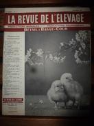 1957 LRDLE  : Prairies; Débroussaillage; Bovins; Les Brebis En Régions Pauvres;Les Dindons; Etc - Animals