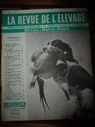 1957 LRDLE  : Dans Une Ferme De Saône Et Loire; Testage En Jura; Des Lorgnons Pour Les Poules; Etc - Animals
