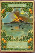Italie - Campanie - 1929 - Naples - Livret Cartes - Ricordo Di Napoli - 32 Vedute Ditta Roberto ZEDDA Napoli - - Napoli (Naples)
