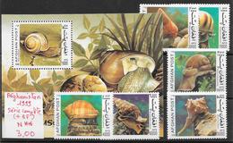 Poisson  Mollusque Coquillage Escargot - Afghanistan N°xx à Xx, BF N°xx 1999 ** - Coneshells