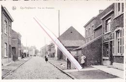 OP-HEYLISSEM - Rue Des Brasseurs - Hélécine