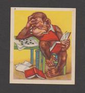 Singe - Animaux Comiques N°3 - Chocolaterie - Confiserie A.LECOCQ à BRUXELLES   (REF 411) - Chocolate